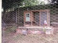 Recycled Chicken Coop